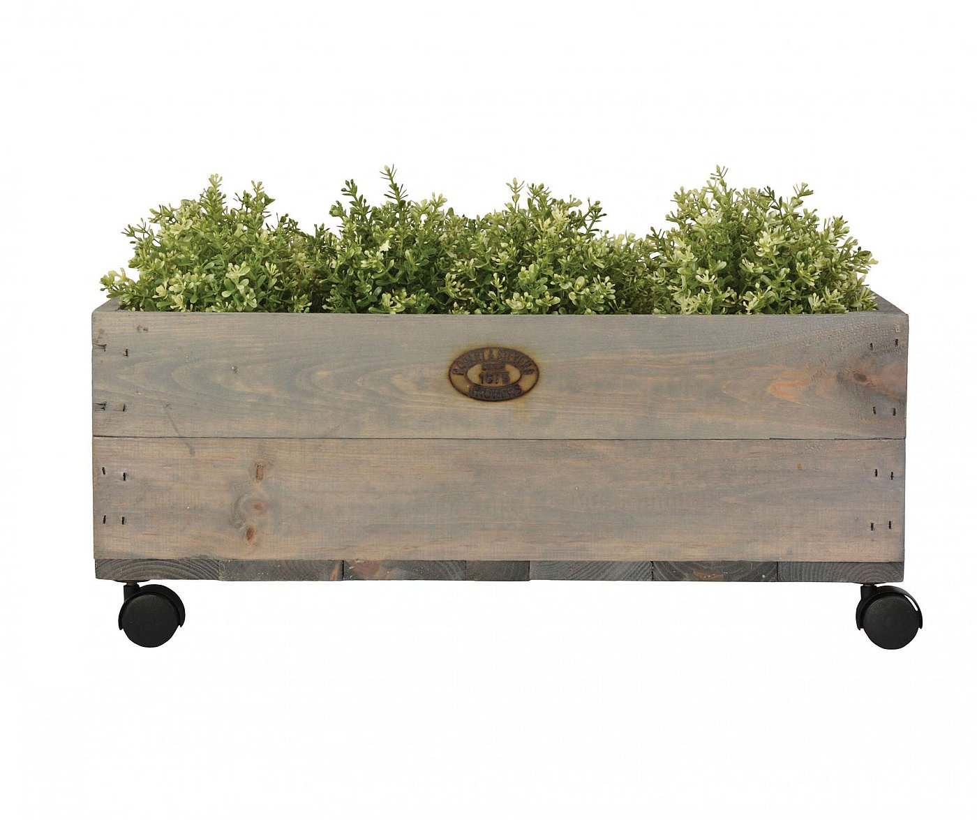 Jardiniera Planter Delight M