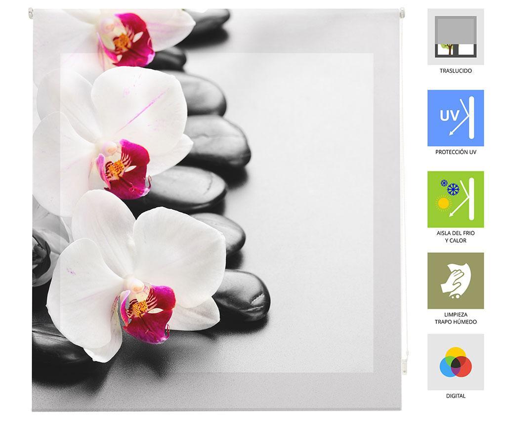Rolo zastor Orchid 160x180 cm