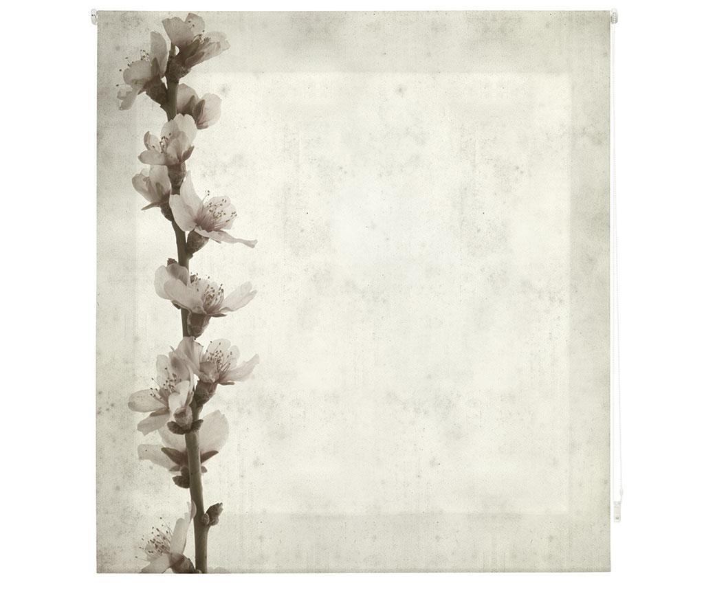 Jaluzea tip rulou Growth 160x180 cm