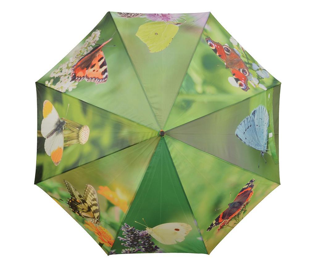 Parasolka Butterflies