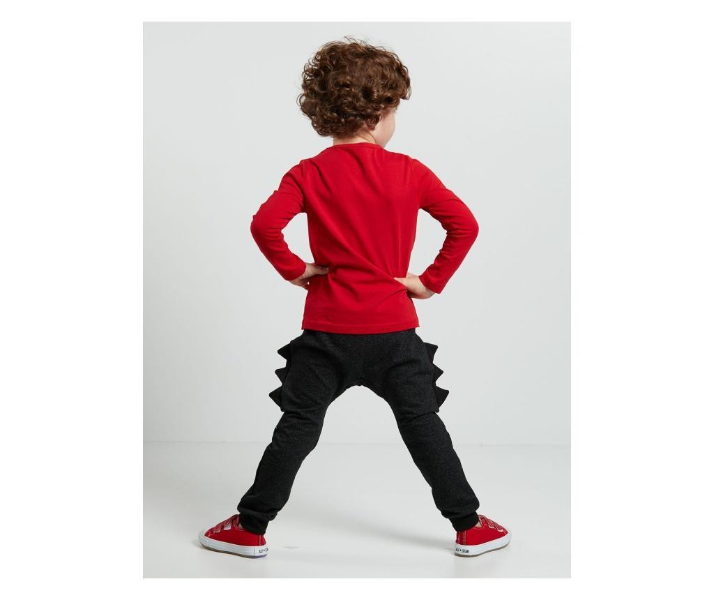 Set bluza si pantaloni Dino Spikes 7 years