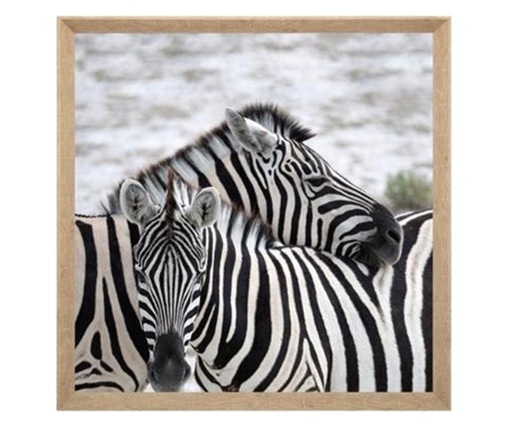 Tablou canvas Zebra, 58x58 cm